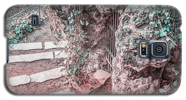 City Grotto Galaxy S5 Case