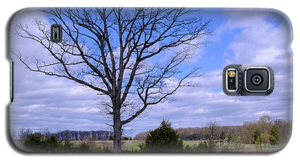Civil War Fence And Tree With No Leaves Next In Gettysburg Penns Galaxy S5 Case