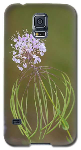 Clasping Warea Galaxy S5 Case