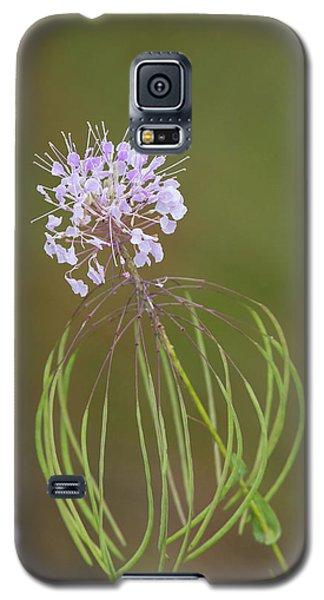 Clasping Warea Galaxy S5 Case