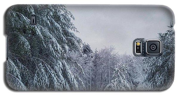 Classic Winter Scene In New England  Galaxy S5 Case