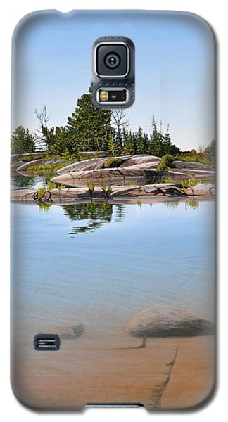 Galaxy S5 Case featuring the painting Clear Contentment by Kenneth M Kirsch
