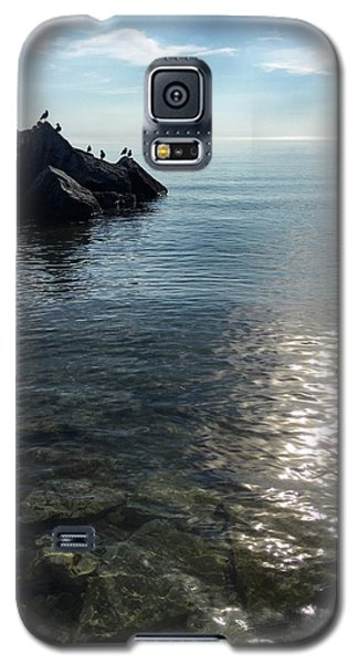 Clear Lake Galaxy S5 Case