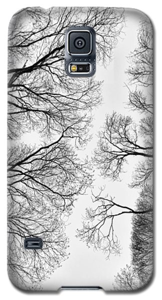 Clearings Galaxy S5 Case