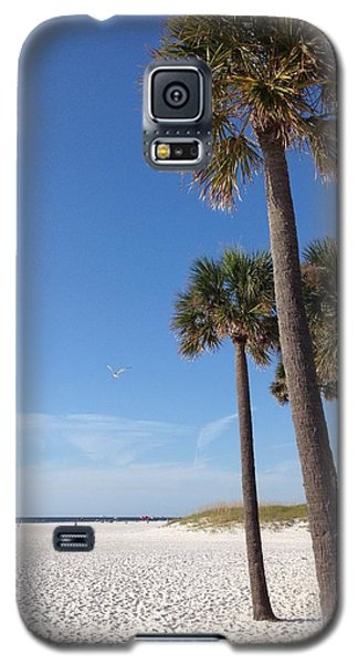Clearwater Palms Galaxy S5 Case