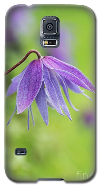 Galaxy S5 Case featuring the photograph Clematis Lagoon Flower by Tim Gainey