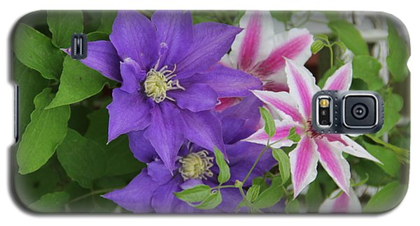 Clematis Purple And Pink White Galaxy S5 Case