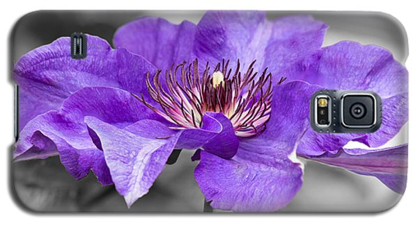 Clematis Galaxy S5 Case by Scott Carruthers