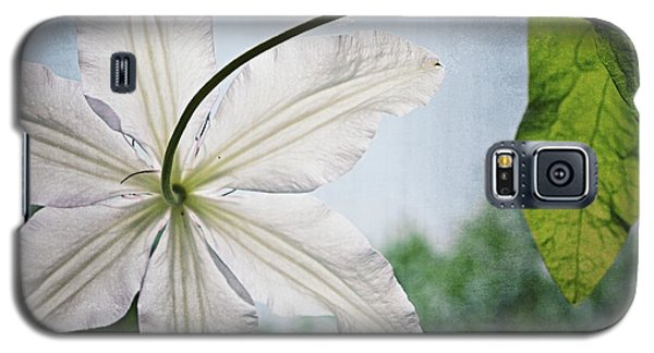 Galaxy S5 Case featuring the photograph Clematis Vine And Leaves by Michelle Calkins