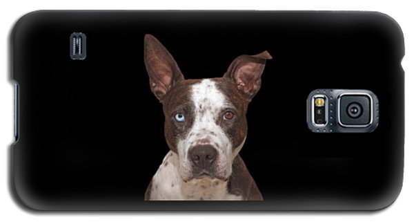 Cleo  Galaxy S5 Case by Brian Cross