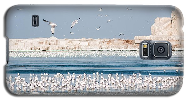 Cleveland Lighthouse In Ice  Galaxy S5 Case
