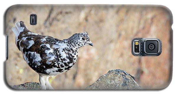 Cliffside Ptarmigan Galaxy S5 Case