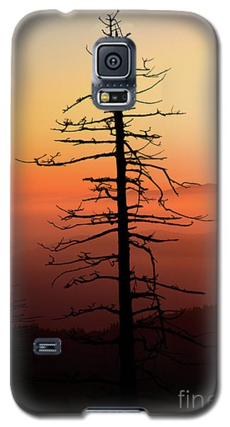 Galaxy S5 Case featuring the photograph Clingman's Dome Sunrise by Douglas Stucky