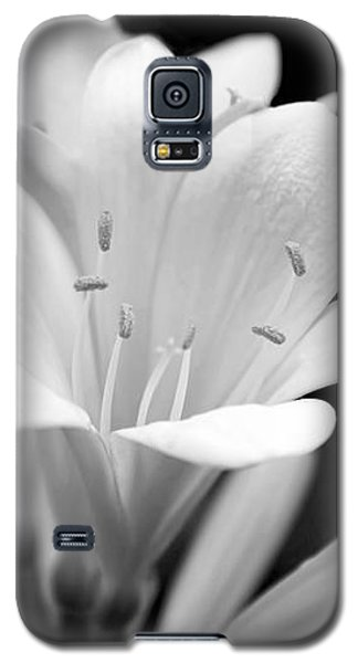 Clivia Flowers Black And White Galaxy S5 Case