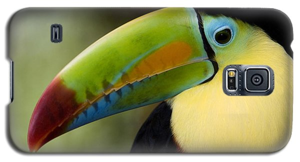 Close-up Of Keel-billed Toucan Galaxy S5 Case