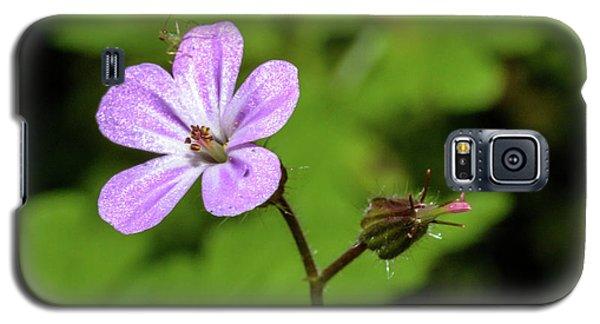 Close Up Of Shining Cranesbill A Galaxy S5 Case