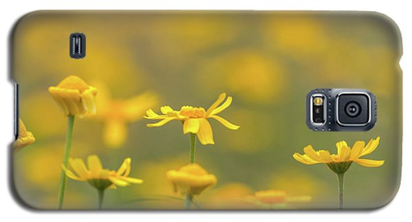 Close Up Of Yellow Flower With Blur Background Galaxy S5 Case