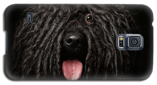 Close Up Portrait Of Puli Dog Isolated On Black Galaxy S5 Case