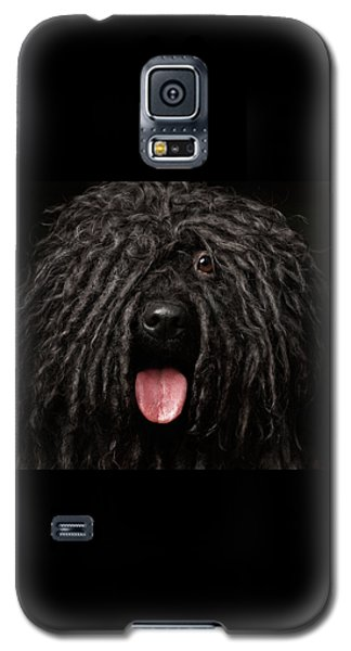 Close Up Portrait Of Puli Dog Isolated On Black Galaxy S5 Case by Sergey Taran