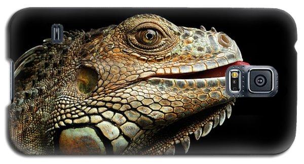 Close-upgreen Iguana Isolated On Black Background Galaxy S5 Case by Sergey Taran