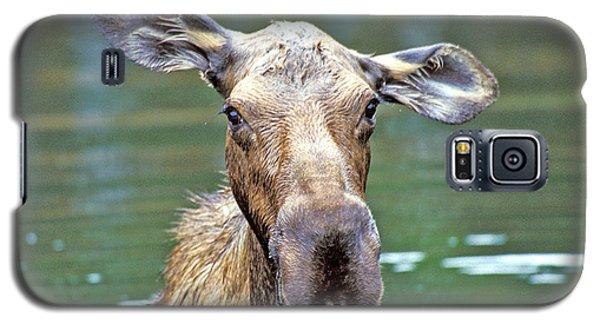 Close Wet Moose Galaxy S5 Case