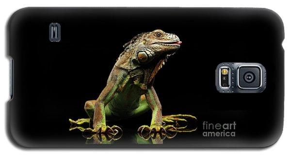 Closeup Green Iguana Isolated On Black Background Galaxy S5 Case