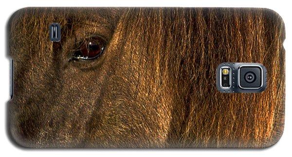 Closeup Of An Icelandic Horse #2 Galaxy S5 Case