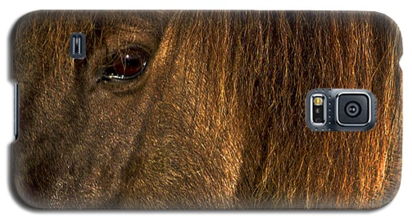 Closeup Of An Icelandic Horse #2 Galaxy S5 Case by Stuart Litoff