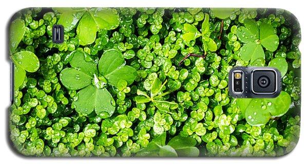 Lush Green Soothing Organic Sense Galaxy S5 Case