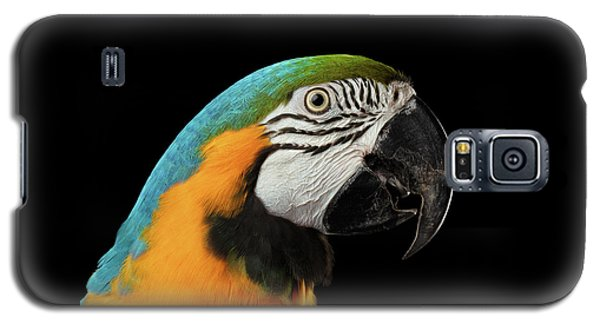 Closeup Portrait Of A Blue And Yellow Macaw Parrot Face Isolated On Black Background Galaxy S5 Case