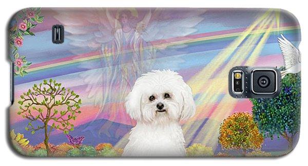 Cloud Angel And Bichon Frise Galaxy S5 Case