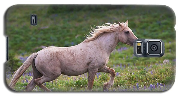 Cloud- Wild Stallion Of The West Galaxy S5 Case