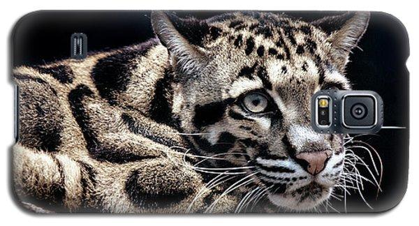 Clouded Leopard Galaxy S5 Case