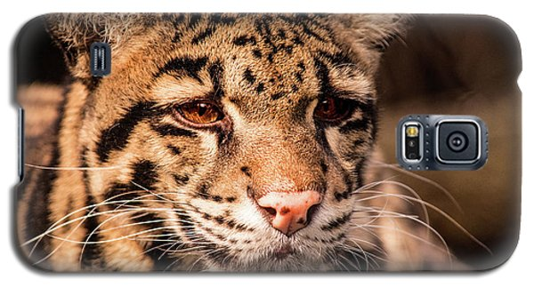 Clouded Leopard II Galaxy S5 Case