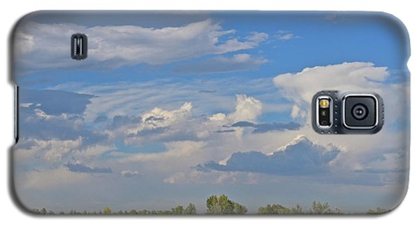 Clouds Aboive The Tree Farm Galaxy S5 Case