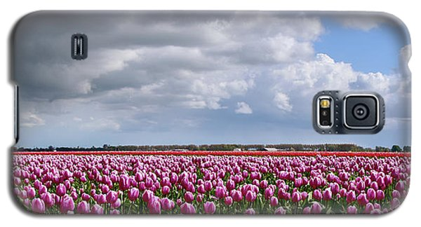 Clouds Over Purple Tulips Galaxy S5 Case