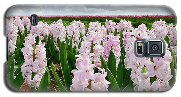 Clouds Over The Pink Hyacinth Field Galaxy S5 Case by Mihaela Pater