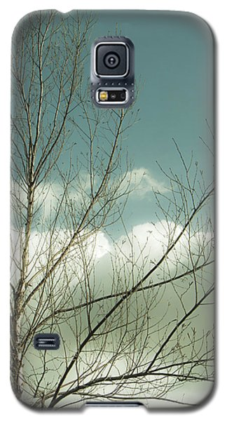 Galaxy S5 Case featuring the photograph Cloudy Blue Sky Through Tree Top No 1 by Ben and Raisa Gertsberg