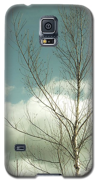 Galaxy S5 Case featuring the photograph Cloudy Blue Sky Through Tree Top No 2 by Ben and Raisa Gertsberg