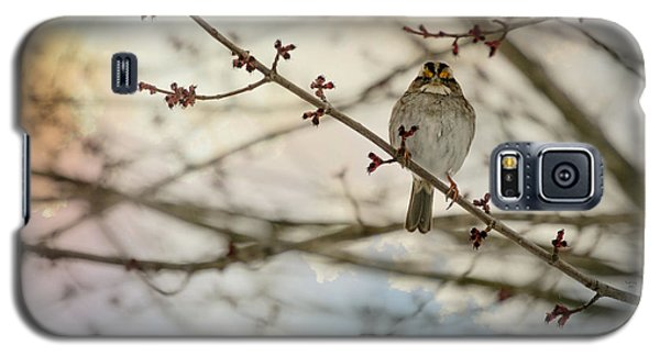 Galaxy S5 Case featuring the photograph Cloudy Finch by Trish Tritz
