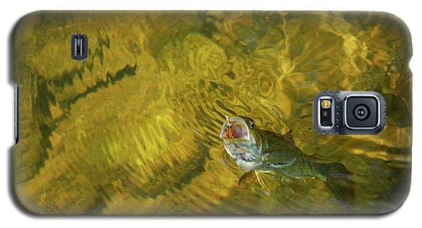 Clouser Smallmouth Galaxy S5 Case