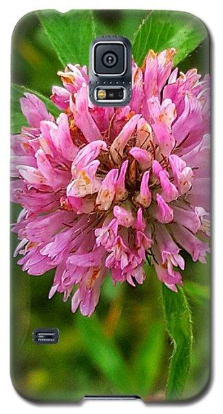 Clover Galaxy S5 Case