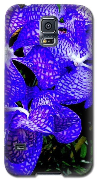 Cluster Of Electric Blue Vanda Orchids Galaxy S5 Case
