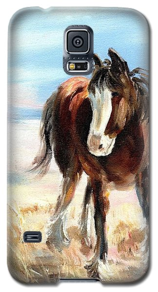 Clydesdale Foal Galaxy S5 Case