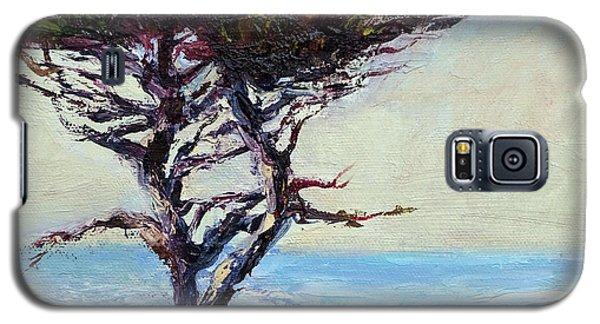 Coast Cypress Galaxy S5 Case