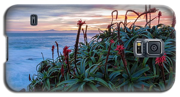 Coastal Aloes Galaxy S5 Case
