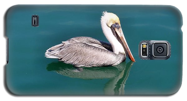 Coastal Cruiser Galaxy S5 Case