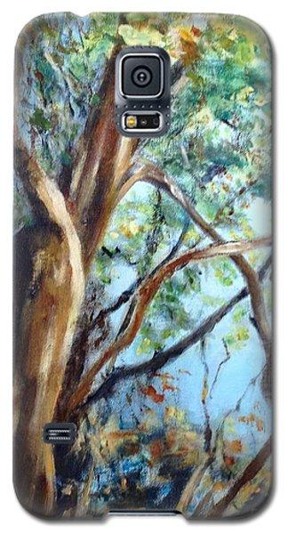 Coastal Forest Galaxy S5 Case by Mary Lynne Powers