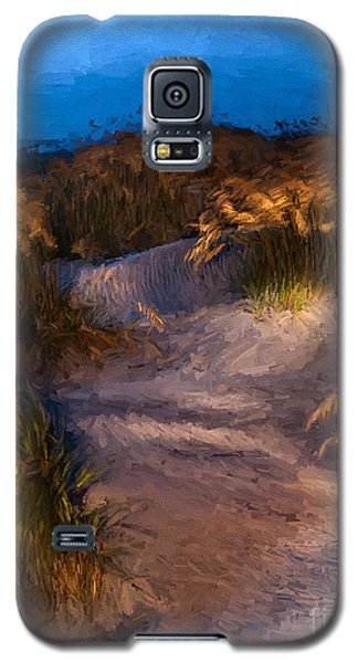 Galaxy S5 Case featuring the painting Coastal Passage by Dan Carmichael