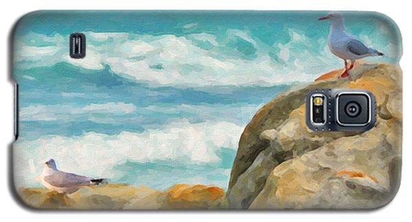 Coastal Rocks Galaxy S5 Case